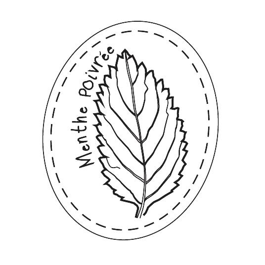 Menthe Poivrée - L'Escale des Créateurs
